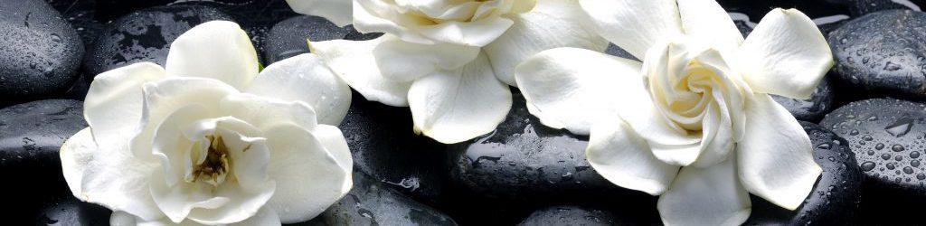 Artisan-Aromatics-Gardenia-Limited-Edition-1024x680
